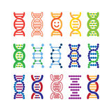 Set of colorful DNA icons. Royalty Free Stock Image
