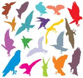 Set of colorful eagle silhouettes-2. Set of vector colorful cut out flying and sitting silhouettes of eagle, hawk isolated on white background Royalty Free Stock Images