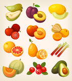 Set of colorful exotic fruit. Exotic tropical, garden and field fruit. Icons for labels and packages or for learning kinds of fruit Royalty Free Stock Photos