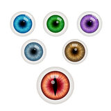 Set of colorful eye balls. Vector illustration Royalty Free Stock Photos