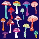 Set of colorful fantasy mushrooms illustration Royalty Free Stock Photography