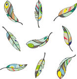 Set of colorful feathers on black background Royalty Free Stock Photos