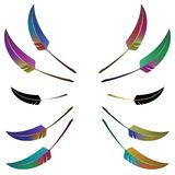 Set of 10 colorful feathers Royalty Free Stock Image