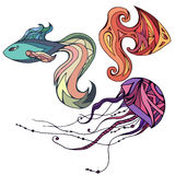 Set of colorful fish and jellyfish, decorated boho pattern. Vector element for your creativity Royalty Free Stock Photo