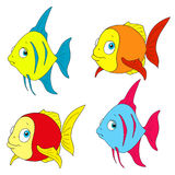 A set of colorful fish. Vector isolated. On white background Royalty Free Stock Photography