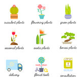 Set of colorful flat icons for Flower or Florist shop. Different types of House plants illustration. Vector botanical graphic set for logo design Stock Images