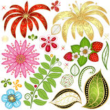 Set colorful floral design elements Stock Image