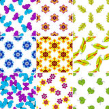 Set colorful floral patterns Royalty Free Stock Image
