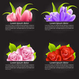Set of colorful flower in banner Royalty Free Stock Photo