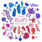 Set of colorful flowers and branches royalty free illustration