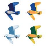 Set of colorful flying birds, illustration Stock Images