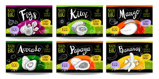 Set of hand drawn food labels, spices labels, fruit labels, vege. Set colorful food labels, sketch style, food fruits cardboard texture. Figs, kiwi, mango Stock Image