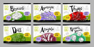 Set of hand drawn food labels, spices labels, fruit labels, vege Royalty Free Stock Image