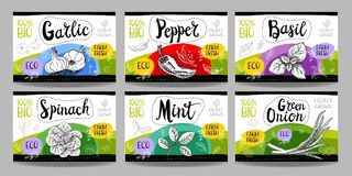 Set of hand drawn food labels, spices labels, fruit labels, vege Royalty Free Stock Photography