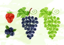 Set of colorful fresh fruit stains Stock Photos