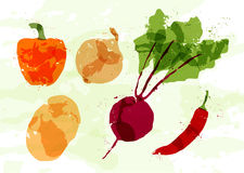 Set of colorful fresh vegetables stains Royalty Free Stock Photography