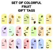 Set of colorful fruit gift tags. Flat design collection of isolated fruit labels vector illustration