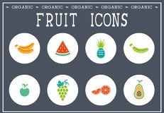 Set of colorful fruit icons Royalty Free Stock Photos