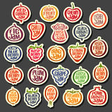 Set colorful Fruits Jam icons Royalty Free Stock Images