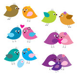 Set of colorful fun lovers of birds Royalty Free Stock Photos