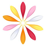 Set of colorful gerbera petals. Flower parts. Royalty Free Stock Photography