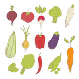 Set of colorful hand drawn sketched vegetables: tomato, onion, beets, zucchini, eggplant, peppers, broccoli, peas, lettuce, carrot Stock Photography