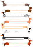 Set of colorful long Dachshund with blank space Stock Image