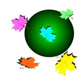 Set of colorful maple leaves vector illustration