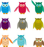 Set of Colorful Owls Stock Images