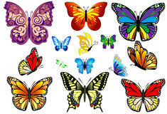 Set of Colorful Realistic Isolated Butterflies. Stock Photo