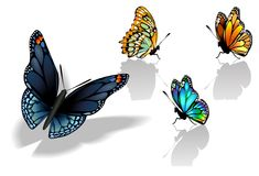 Set of Colorful Realistic Isolated Butterflies. Stock Images