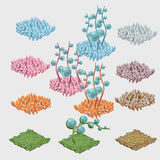 Set of colorful sea grasses and unusual flowers Royalty Free Stock Photography