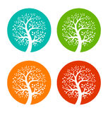 Set of Colorful Season Tree icons Stock Photography