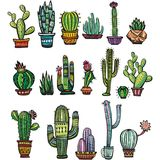 Set of colorful succulents and cactuses Stock Photography
