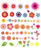 Set of colorful summer flowers Royalty Free Stock Images