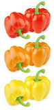Set of colorful sweet peppers Stock Image