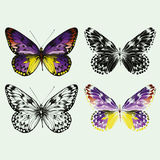 Set of colorful vector butterflies, hand-drawing. Stock Photos