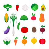 Set colorful vegetable Royalty Free Stock Image