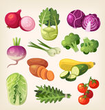 Set of colorful vegetables Royalty Free Stock Image