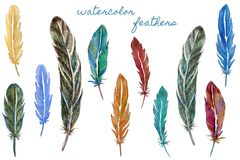 Set of colorful watercolor feathers. Hand drawn vector illustration