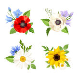 Set of colorful wild flowers. Vector illustration. Vector set of colorful wild flowers: poppy, sunflower, harebell, daisy and cornflowers isolated on a white Stock Photo