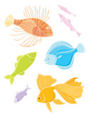 Set colors tropical fishes. Stock Photography