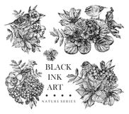 Set of compositions with dotted flowers, birds and plants drawn by hand with black ink Stock Images