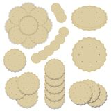 Set of compositions from round cookies baking delicious crispy light beige cracker wavy edge line pattern vector isolated on white. Set of compositions from Stock Images
