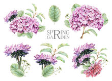 Set of compositions with spring flowers and plants drawn by hand with crayons Stock Image