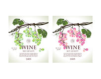 Set of conceptual labels for white and rose wine Stock Image