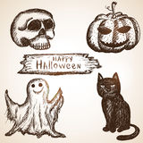 Set consists of pumpkin, black cat, skull and Royalty Free Stock Image