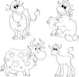 Set of contour cows Royalty Free Stock Image