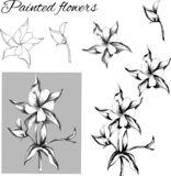 Set of contour flowers. Black and white drawing, sketch drawn in ink. Outline of vector flowers.  royalty free illustration