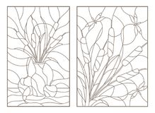 Contour set with  illustrations of stained glass from reeds, still life with fruit and a bouquet with dragonflies Stock Photo